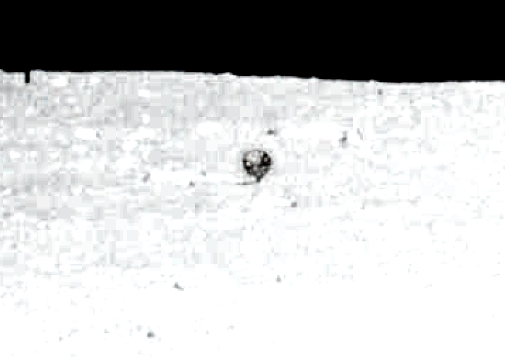Apollo 11 Anomaly on the Lunar Surface As11-410