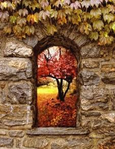 La fenêtre de pierres (reflet d'octobre) Reflet10