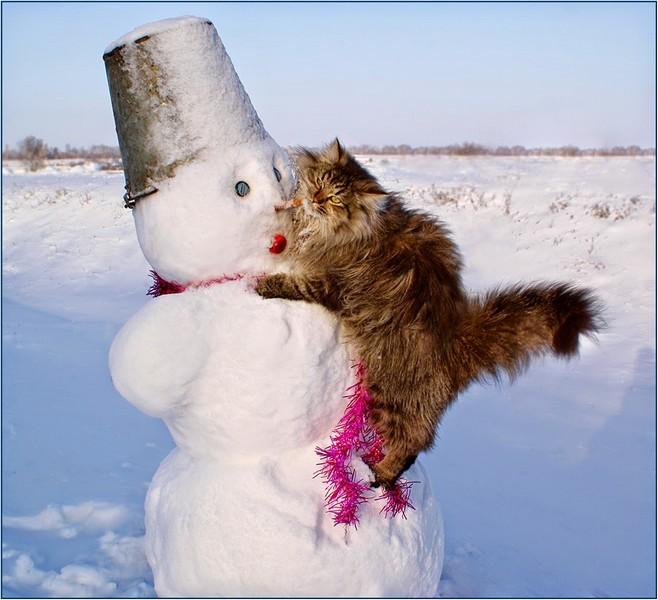 Sourires et tendresse d'hiver Reflet12