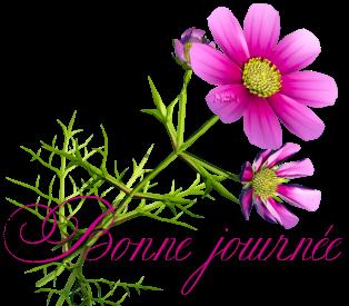 Bonjour/bonsoir de Janvier - Page 3 98536510