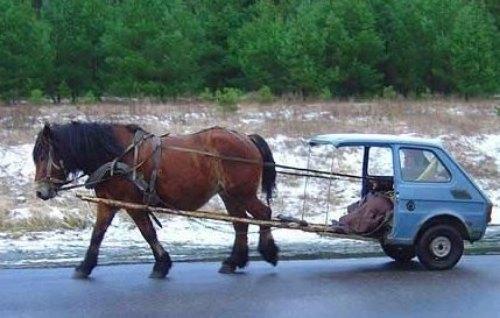 De l'Hippo à l'auto Hippot10