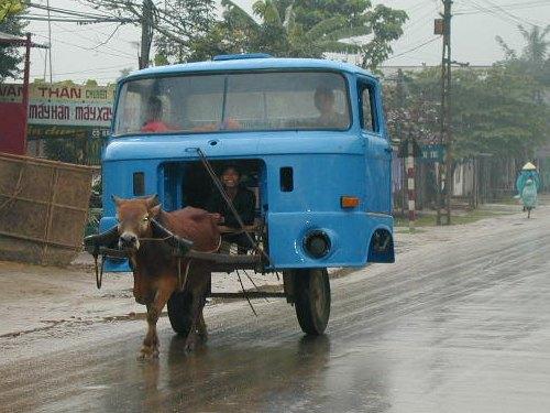 De l'Hippo à l'auto Hippot11