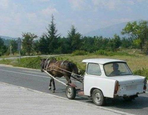 De l'Hippo à l'auto Hippot12