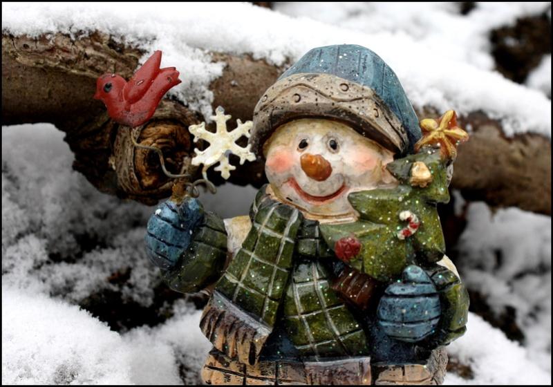 ( Ouvert à tous )  Les fêtes de fin d'année ! C01210