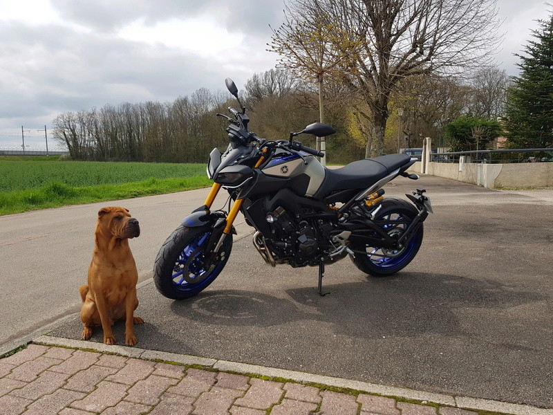 Yamaha MT09 SP by Titi#23 20180416