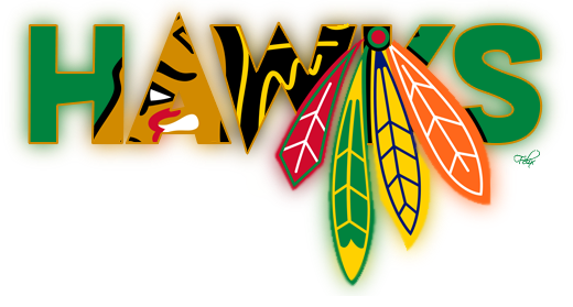 Chicago Blackhawks S7 Blackh13