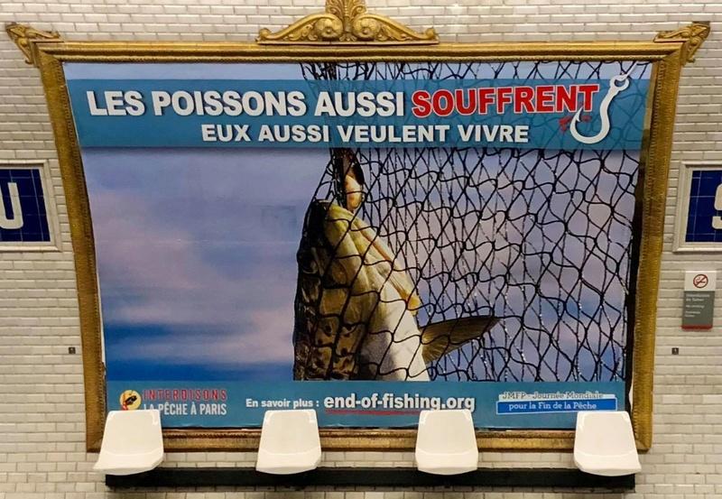 Campagne anti-pêche à Paris _antip10