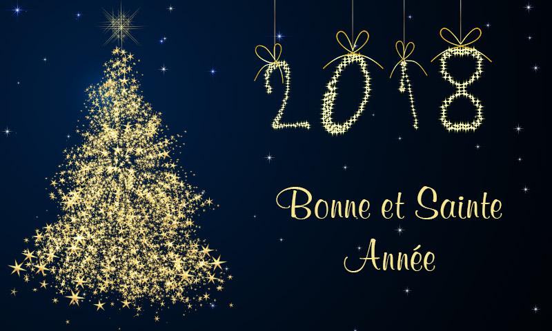 Bonne et Sainte Année 2018 à tous les membres de Apocalypse Now ! 201810