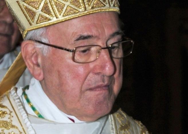 """Cardinal Burke : Pas de """"correction formelle"""" car Brandmüller s'est débiné ! 381aqr10"""