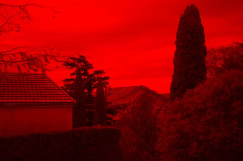 Photo infra rouge  Dsc_8012