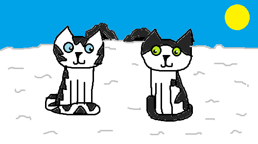 Missing Kittehs D: Snowwe11