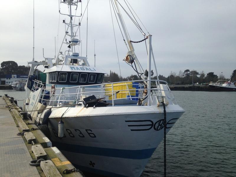 [VIE DES PORTS] Quelques bateaux de pêche (sur nos côtes Françaises) - Page 37 Img_0411
