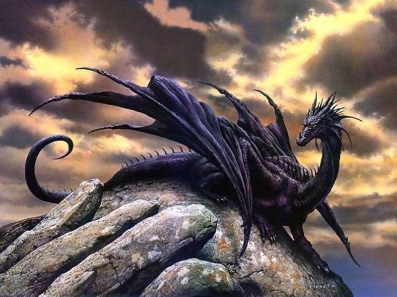 Drachen: Nur Legende oder doch Realität. - Seite 2 12088410