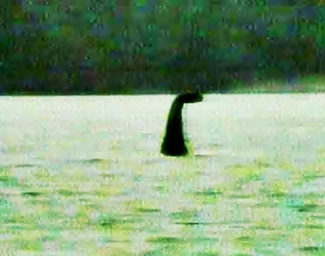 Geheimnisvolle Begegnungen - von Bigfoot, Nessie, Aliens und anderen Kreaturen  26605810