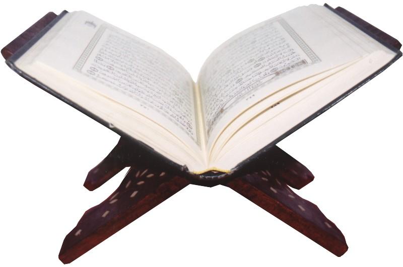 المصحف الإلكتروني أحد أهم روافد العلوم القرآنية Quran10