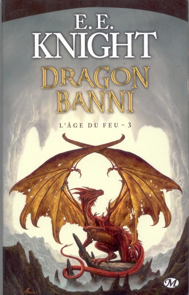 Le coin des dragons en littérature Livre_11