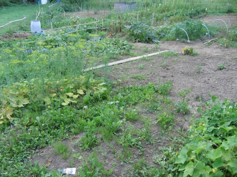 Trouver et faire un jardin Vue_du11