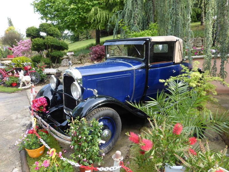 77 - Chelles - Jardinerie Laplace 00729