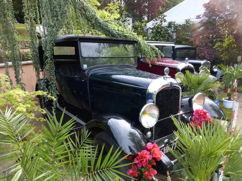 77 - Chelles - Jardinerie Laplace 00824