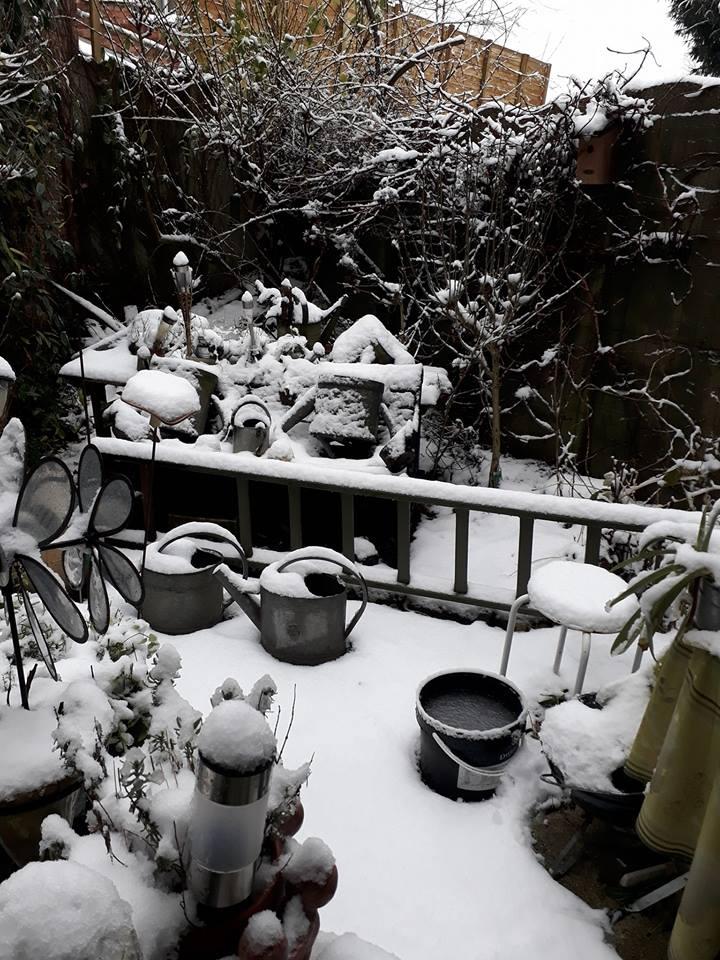 Jardin d'hiver chez Ninie Jardin10