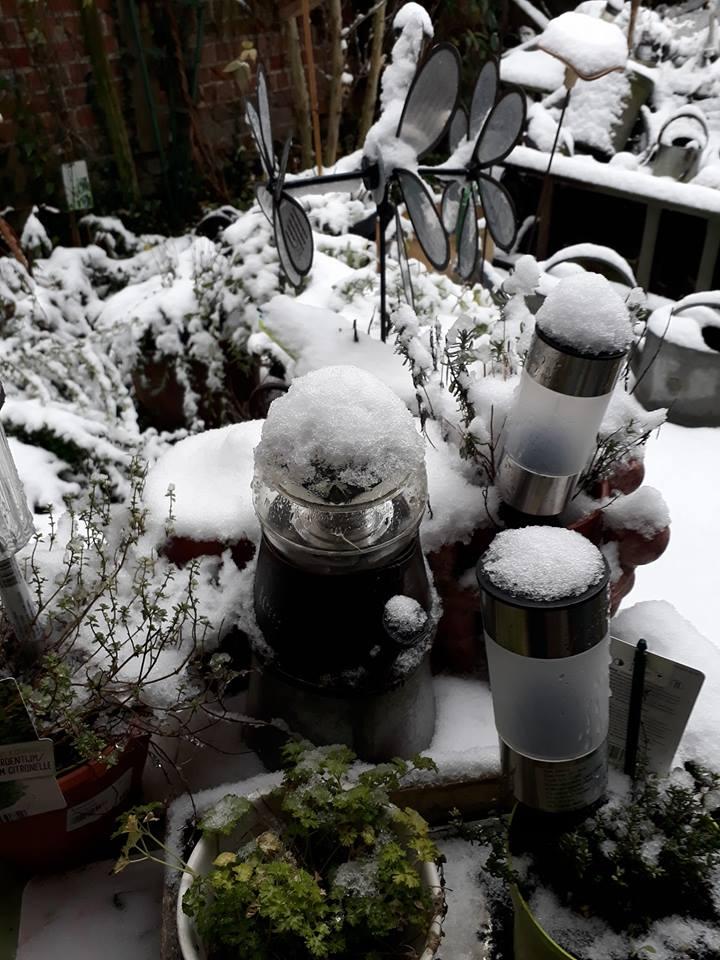 Jardin d'hiver chez Ninie Jardin11