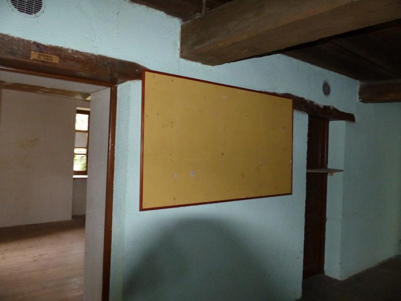 tableau jaune[Plecotus auritus] P1160114