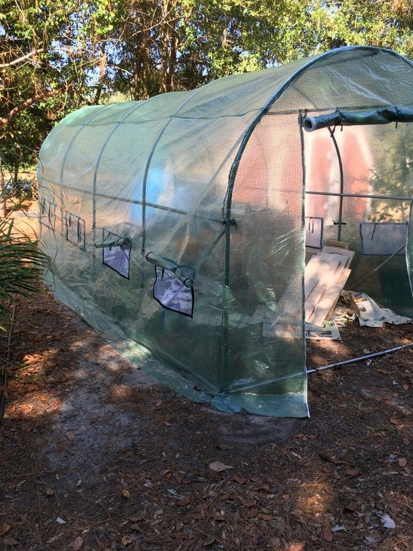 new greenhouse got drafted 001-im10