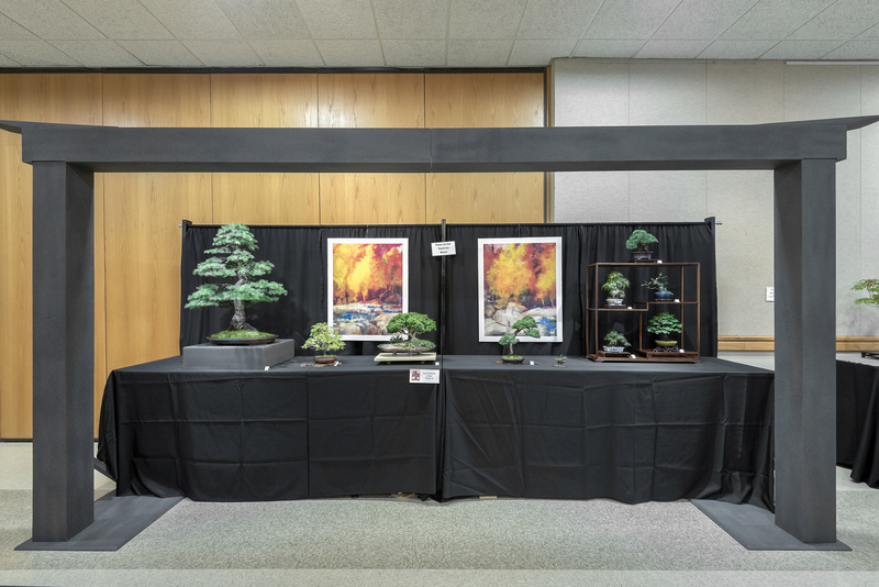 Carolina Bonsai Expo 2017 Bonsai10