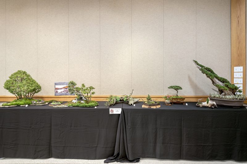Carolina Bonsai Expo 2017 Mounta10