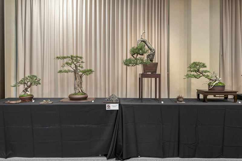 Carolina Bonsai Expo 2017 Nashvi10