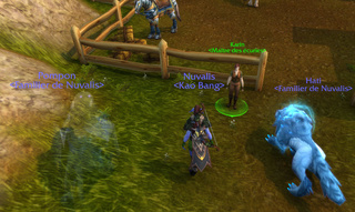 Familiers pour chasseurs Wowscr10