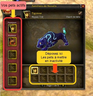 Familiers pour chasseurs Ycurie10