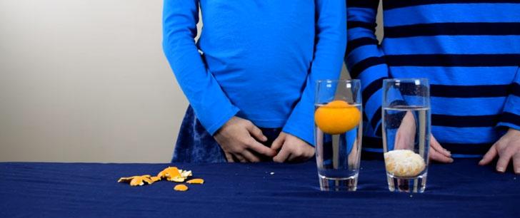 Une orange avec sa peau flottera sur l'eau, une orange pelée coulera ! Orange10