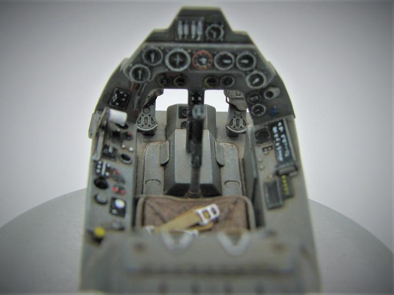 fw 190 A5 hasegawa  au 32.....  fini ...!!!! Img_6243