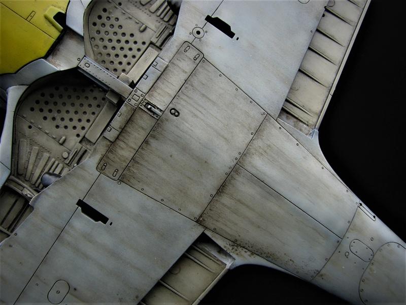 fw 190 A5 hasegawa  au 32.....  fini ...!!!! - Page 3 Img_6446