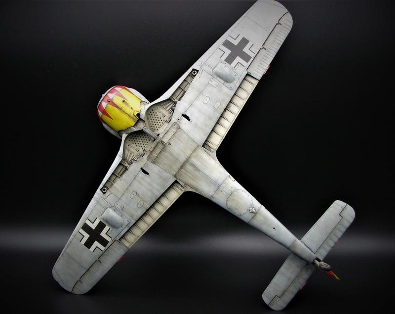 fw 190 A5 hasegawa  au 32.....  fini ...!!!! - Page 3 Img_6447