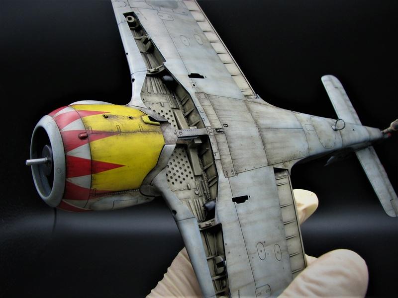 fw 190 A5 hasegawa  au 32.....  fini ...!!!! - Page 3 Img_6455