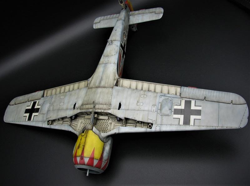 fw 190 A5 hasegawa  au 32.....  fini ...!!!! - Page 3 Img_6456