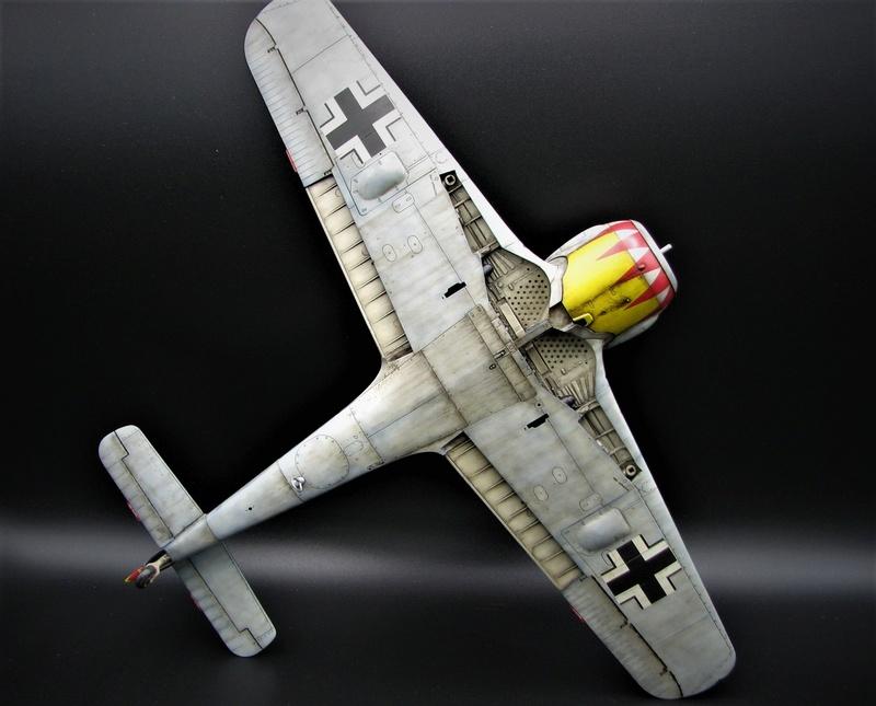fw 190 A5 hasegawa  au 32.....  fini ...!!!! - Page 3 Img_6459