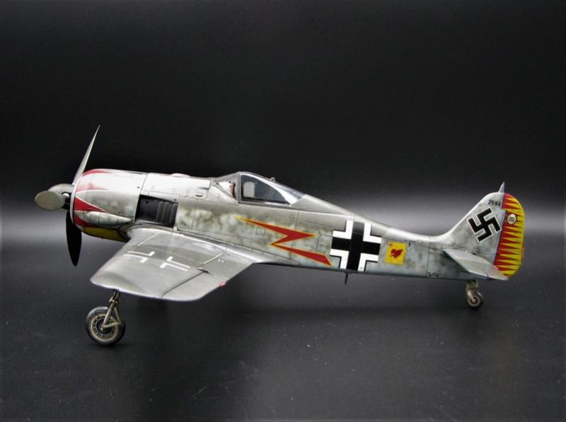 fw 190 A5 hasegawa  au 32.....  fini ...!!!! - Page 3 Img_6472