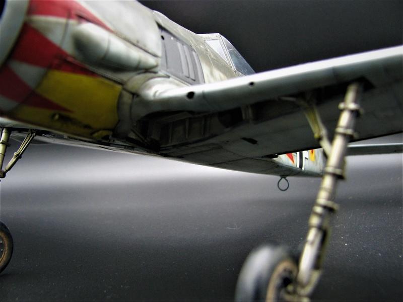 fw 190 A5 hasegawa  au 32.....  fini ...!!!! - Page 3 Img_6511