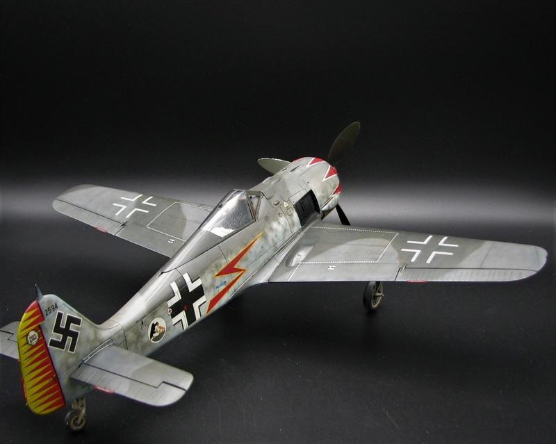 fw 190 A5 hasegawa  au 32.....  fini ...!!!! - Page 3 Img_6513