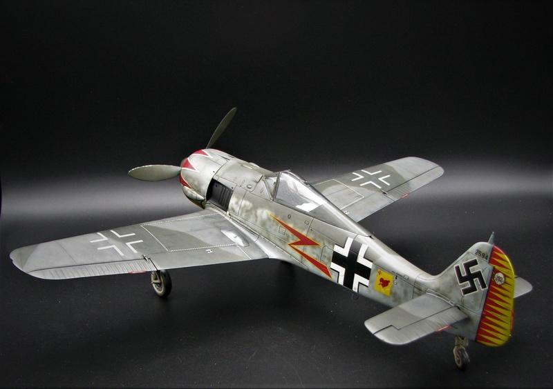 fw 190 A5 hasegawa  au 32.....  fini ...!!!! - Page 3 Img_6517