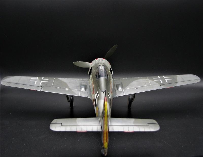 fw 190 A5 hasegawa  au 32.....  fini ...!!!! - Page 3 Img_6519