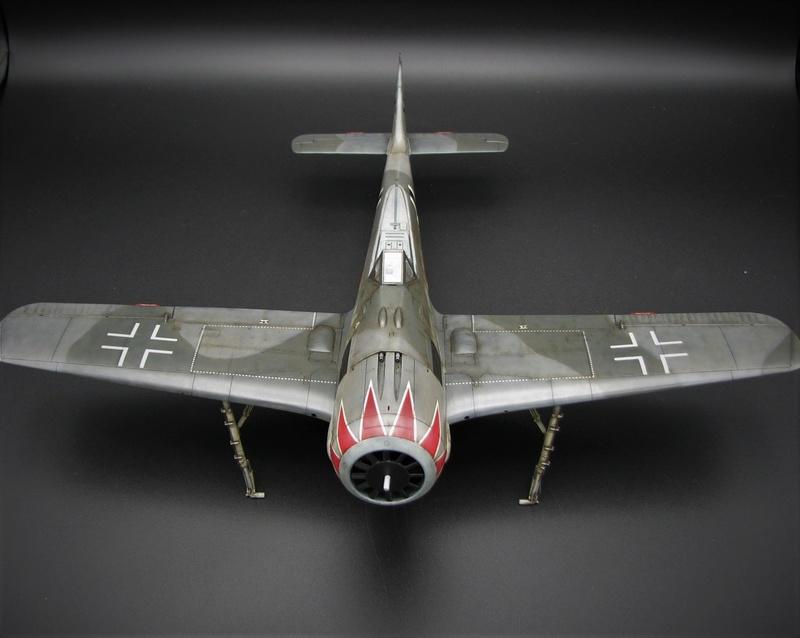 fw 190 A5 hasegawa  au 32.....  fini ...!!!! - Page 4 Img_6550
