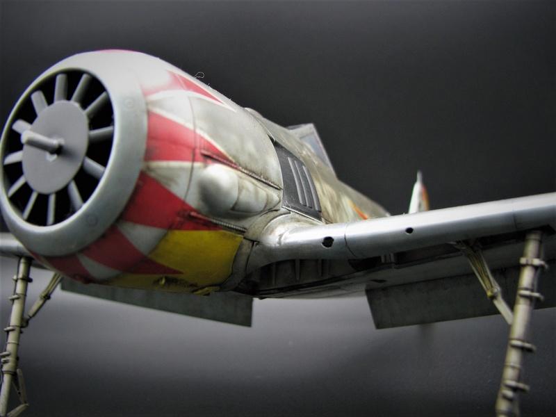 fw 190 A5 hasegawa  au 32.....  fini ...!!!! - Page 4 Img_6558