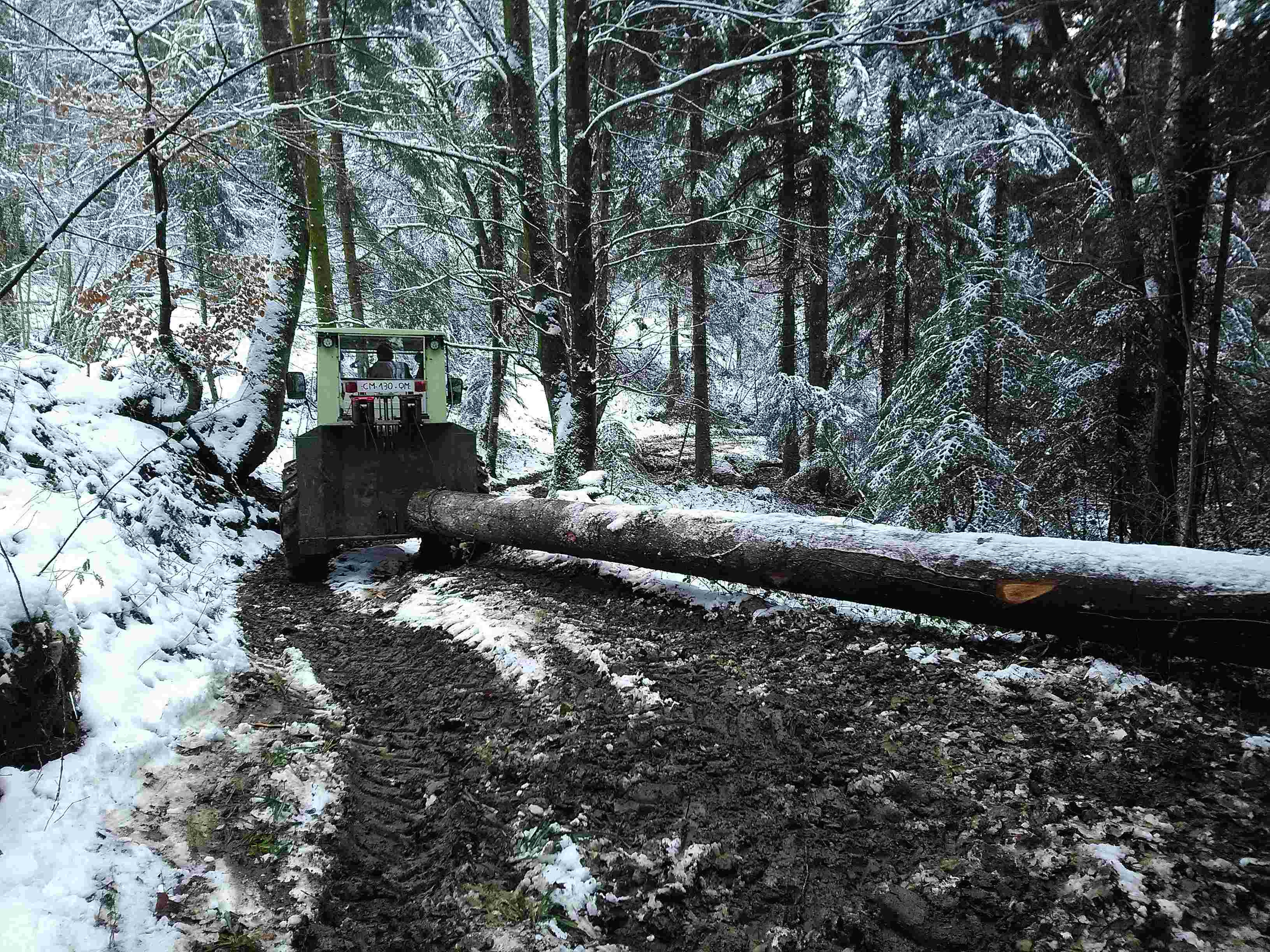Montage forestier d'un MB Trac 800 - Page 6 Img_2025