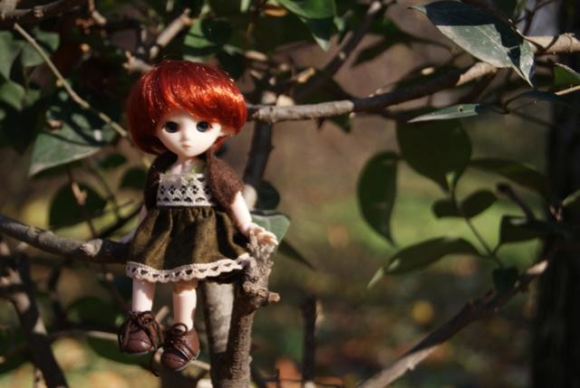 [tiny dolls] ~ Violine, Lilas & Moka ~ Dsc08410