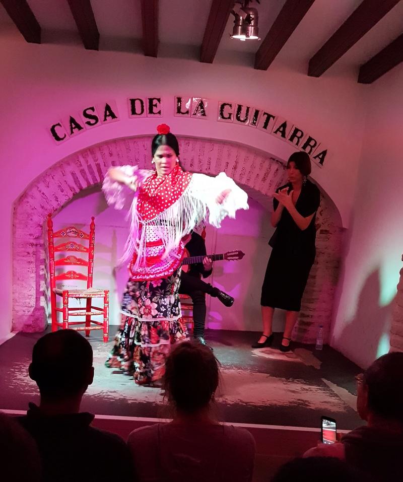 Visite de la maison de la Guitare à Séville  20181249