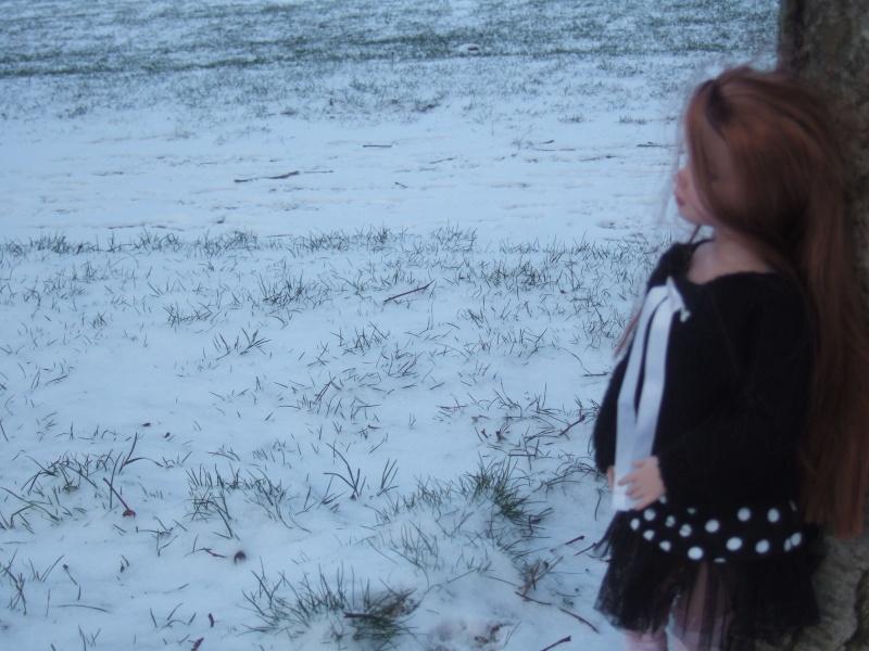 """02 - THEME PHOTO DU MOIS: janvier 2011 """"LE BLANC ET L'HIVER"""" Dscf6011"""